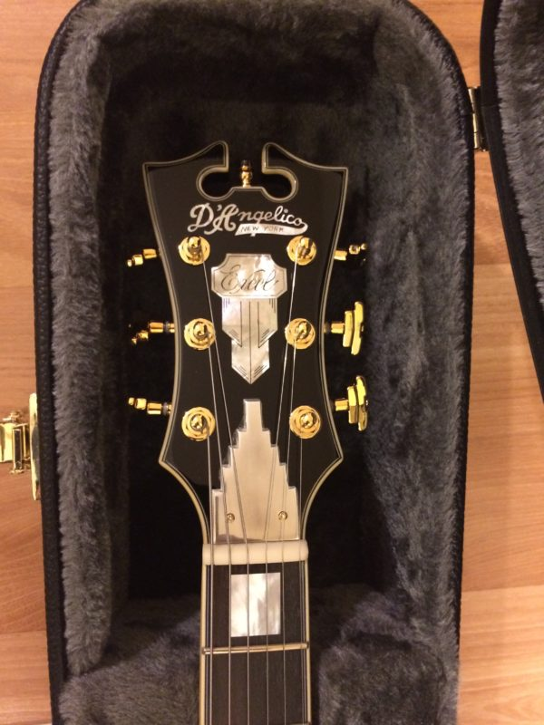 IMG 7025 e1520784755944 600x800 - D'Angelico Excel DC Semi Hollow Body Guitar