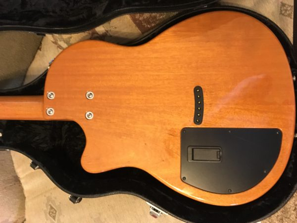 IMG 8511 600x450 - Tom Anderson Crowdster Acoustic Electric Guitar
